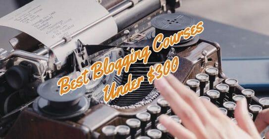 best blogging course under $300