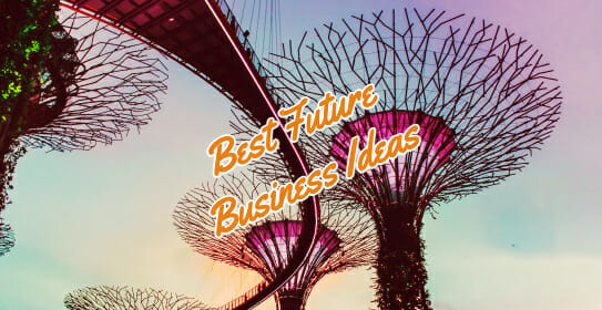 future business ideas Singapore gardens by the bay