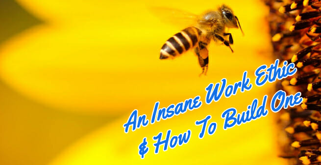 worker bee with insane work ethic